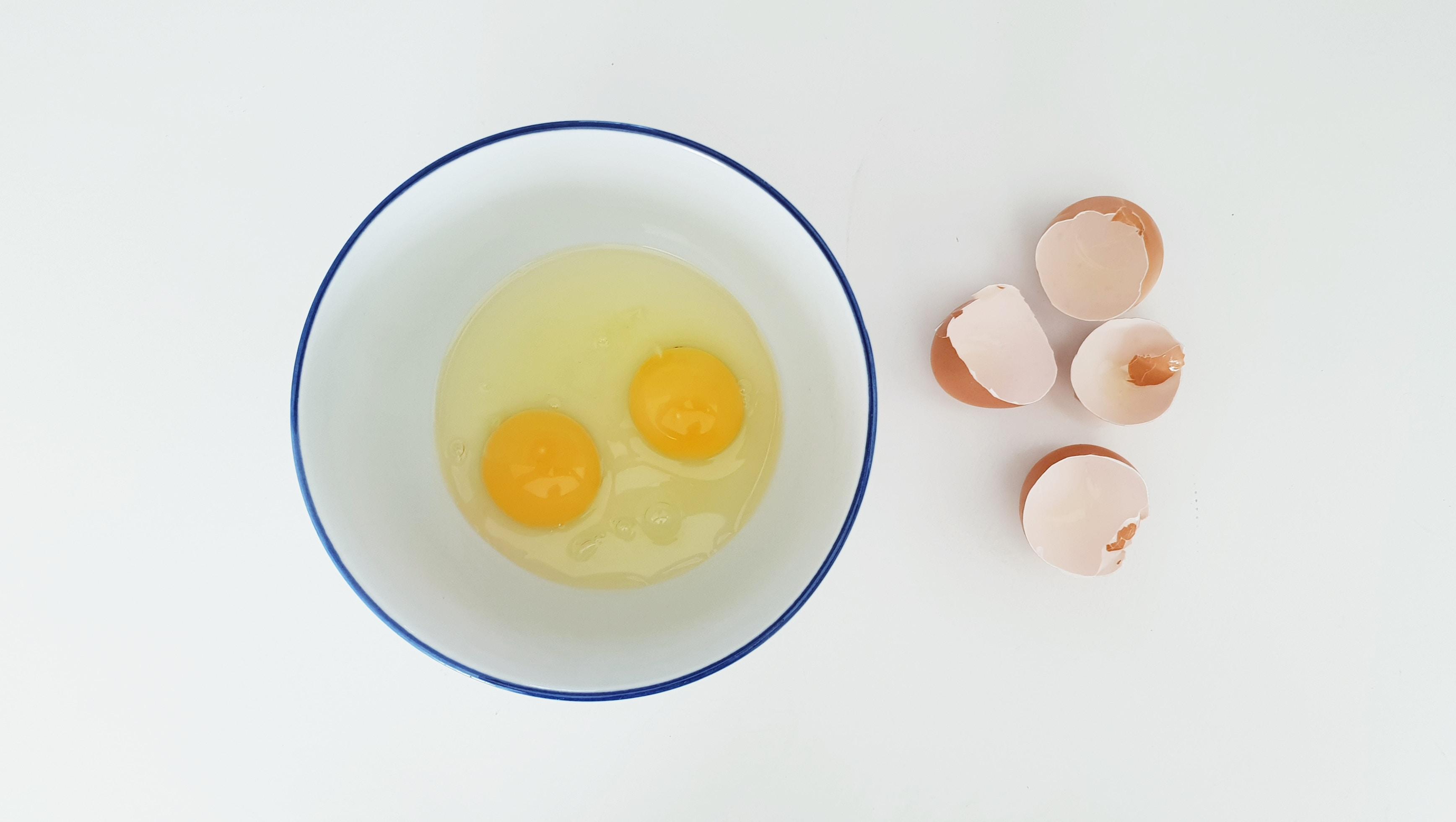 ovulation and fertility